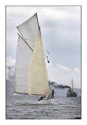 The final day of racing of the Fife Regatta on the King's Course North of Great Cumbrae<br /> <br /> Viola, Yvon Rautureau, FRA, Gaff Cutter, Wm Fife 3rd, 1908<br /> <br /> * The William Fife designed Yachts return to the birthplace of these historic yachts, the Scotland's pre-eminent yacht designer and builder for the 4th Fife Regatta on the Clyde 28th June–5th July 2013<br /> <br /> More information is available on the website: www.fiferegatta.com