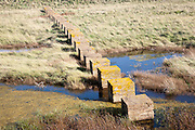 Concrete blocks created as tank traps stepping stones across marshland, Alderton, Suffolk, England, UK