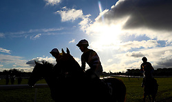 Sartene's Son ridden by Jamie Bargary goes to post before the British Stallion Studs EBF 'National Hunt' Novices hurdle during day one of The International meeting at Cheltenham Racecourse