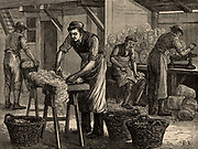 Woolsorters. These workers, who were employed by a woolstapler, sorted the wool from various areas of the fleeces into separate batches.   Like tanners, they were at risk of contracting Anthrax from the fleeces.   From 'Great Industries of Great Britain' (London, c1880).  Engraving.