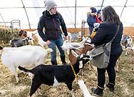 Cornwall, New York - Farm tour at Edgwick Farm on Feb. 16, 2019.