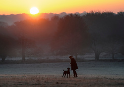 © Licensed to London News Pictures. 02/12/2019. London, UK. A Dog walker watches the sunrise as frost covers the landscape at sunrise in Richmond Park in west London on a bright and freezing Winter morning. Photo credit: Ben Cawthra/LNP