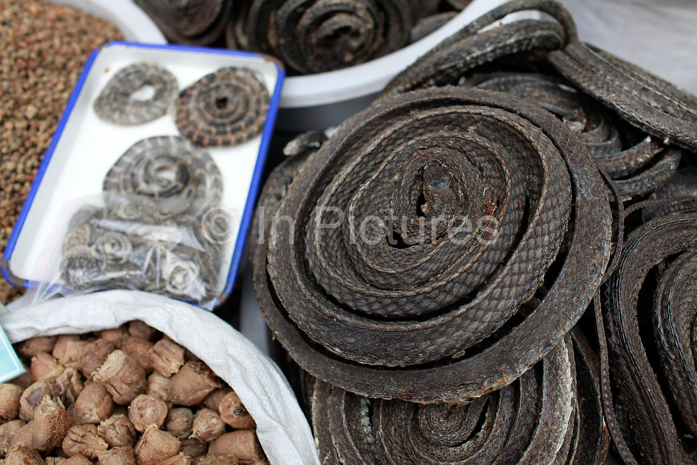 Coils of dried snake used to treat arthritis displayed at a traditional Chinese medicine market in Bozhou, Anhui Province, China on 02 August, 2011. The birth place of legendary doctor Hua Tuo, Bozhou is now one of the four major trading centers in China for traditional Chinese medicine.