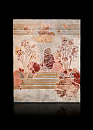 Minoan fresco panel from the 'Lily Frescoes' from the 'Villa of the Lilies' Amnisos, 1600-1500 BC. Heraklion Archaeological Museum. Black Background. <br /> <br /> Ths freco depicts white lilies against a red background and red lilies against w white backgoround with long stems in front of a fence. The wall art uses fresco and 'in cavo' technique. Neopalatial Period. .<br /> <br /> If you prefer to buy from our ALAMY PHOTO LIBRARY  Collection visit : https://www.alamy.com/portfolio/paul-williams-funkystock/minoan-art-artefacts.html . Type -   Heraklion   - into the LOWER SEARCH WITHIN GALLERY box. Refine search by adding background colour, place, museum etc<br /> <br /> Visit our MINOAN ART PHOTO COLLECTIONS for more photos to download  as wall art prints https://funkystock.photoshelter.com/gallery-collection/Ancient-Minoans-Art-Artefacts-Antiquities-Historic-Places-Pictures-Images-of/C0000ricT2SU_M9w
