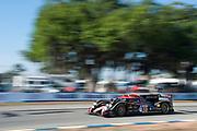March 16, 2013: 61st Mobil 1 12 Hours of Sebring. 12 Nick Heidfeld, Neel Jani, Nicolas Prost, Rebellion Racing