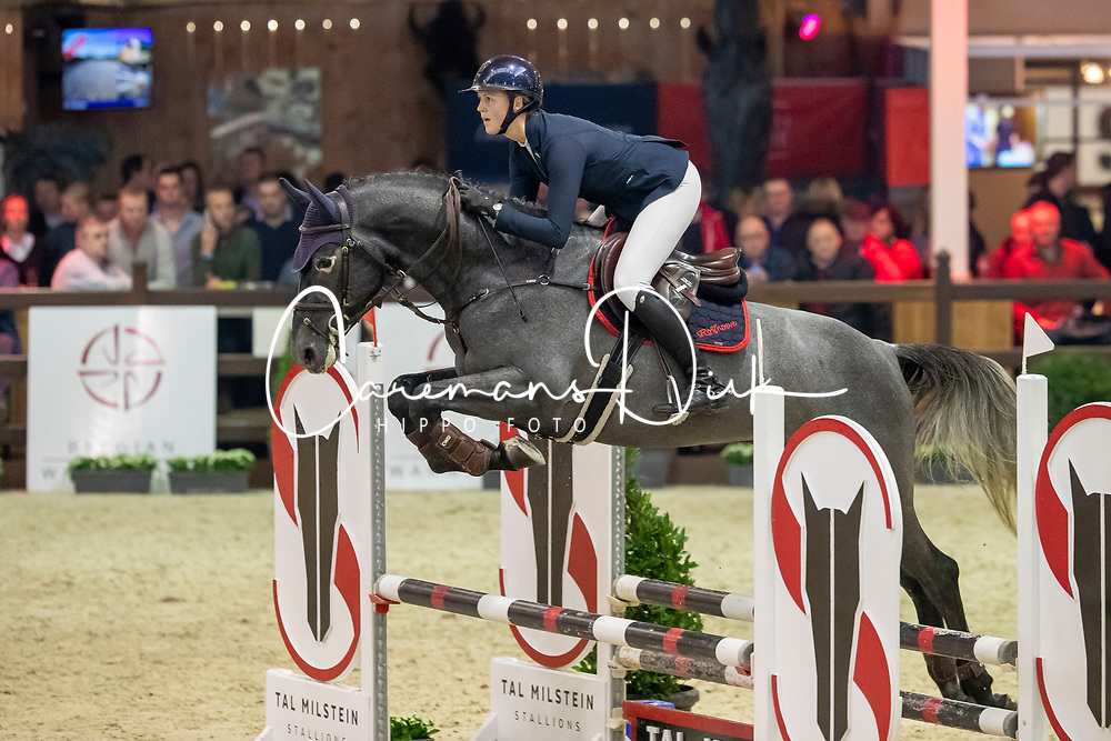 Paulsen Emely Karoline, NOR, Dorian Grey BR Z<br /> Pavo Hengstencompetitie<br /> Azelhof Lier 2020<br /> © Hippo Foto - Dirk Caremans