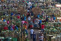 CEAGSP which stands for Companhia de Entrepostos e Armazéns Gerais de São Paulo is the largest wholesale food market in São Paulo, Brazil. CEAGSP est le marché de gros de Sao Paulo (Brésil). Ici le hangar où se vendent les légumes verts.