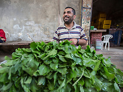 © Licensed to London News Pictures. 17/07/2014. Gaza.   A street seller in Zawya market sells salad on the tenth day of the war between Hamas and Israel as a 5 hour cease fire is agreed.   Photo credit : Alison Baskerville/LNP