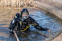 © Licensed to London News Pictures. 09/03/2021. London, UK. A Metropolitan Police Service Underwater and Confined Spaces Search Team diver enters the water at Mount Pond in Clapham Common during the ongoing search for missing person Sarah Everard. Photo credit: Peter Manning/LNP