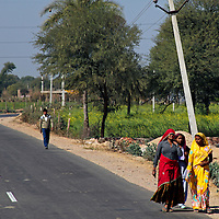 Asia, India, Rajasthan. Women walking along roadside in Rajasthan in colorful saris.