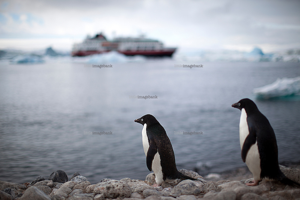 Tourism in Antarctica. Antarctica is the Earth's southernmost continent, encapsulating the South Pole. It is situated in the Antarctic region of the southern hemisphere, almost entirely south of the Antarctic Circle, and is surrounded by the Southern Ocean. At 14.0 million km2, it is the fifth-largest continent in area after Asia, Africa, North America, and South America. About 98% of Antarctica is covered by ice that averages at least 1.6 kilometres. Being one of the worlds most remote and untouched places in the world, tourism is picking up, although in small numbers as the Antarctic is protected by the Antarctic Treaty System or ATS.
