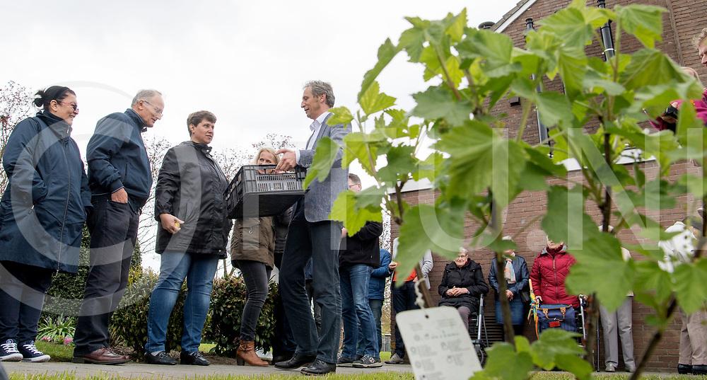 DALFSEN - Wijk boomgaard.<br /> Foto: Opening boomgaard door de nieuwe wethoudwer Jan Uitslag. Uitslag mocht een kratje appels uitdelen, op de voorgrond jonge aanplant, rode bessen.<br /> FFU PRESS AGENCY COPYRIGHT FRANK UIJLENBROEK