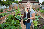 Aeryn picks her first harvest which includes zucchini, swiss chard, yellow squash and cucumbers on October 14, 2010. The Venice Community Garden broke ground in April, 2010. Soil tests revealed high levels of arsenic and lead because of previous uses which included a railroad line going through the lot. Steps were taken which included adding protective layers and adding new soil. Planting began in August and the first harvest was in October, 2010. Venice, California, USA