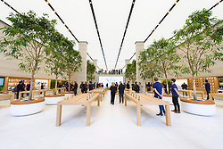 © Licensed to London News Pictures. 13/10/2016. Staff inside the new Apple store in Regent Street is unveiled at a press preview with a new exterior and interior design concept by Foster + Partners.  Regent St was the first Apple store in Europe and has served over 60 million customers over the past 12 years. London, UK. Photo credit: Ray Tang/LNP