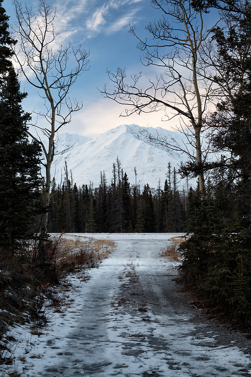 A driveway leads out onto Highway 2 in the Yukon, beckoning the travelers onwards