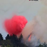 A Cal Fire tanker drops fire retardant north of Davenport on August 16 as the CZU August Lightning Complex gains strength.