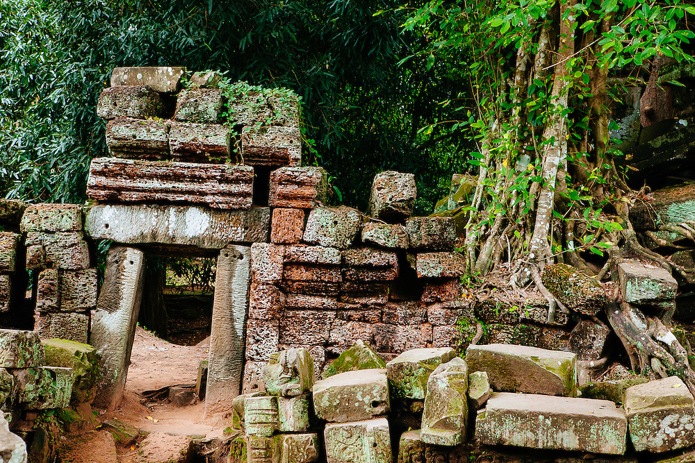 The ruins of Ta Prohm temple that were let go to the growth of the surrounding forest. Cambodia