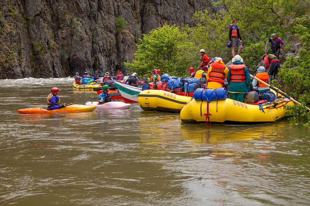 Morning traffic jam on the Snake River in Hells Canyon with the Oars River Company party launching for another day on the River.  Licensing for Editorial Only.