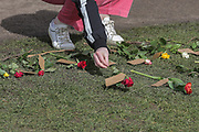 13th, March, 2021. Cheltenham, England. A member of the public lays out a single flower in the 'Flower Lay' event for Sarah.