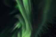 The Aurora Borelis dances, enrapturing Ursa Major in the Alaskan skies