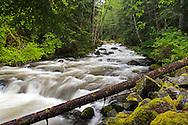 Sowerby Creek spring runoff - Silver Lake Provincial Park near Hope, British Columbia, Canada