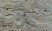 The remnants of mortar that once held a facade on a building in Italy create interesting swirls and pattens.