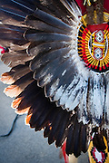 Ronald Crane's eagle feather back bustle covers nearly all of his back and represents warriors' prizes from battle or animals hunted en route to those battles.