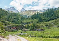 THEMENBILD - der Almboden unterhalb des Kitzsteinhorn ist mit Lärchen bewachsen. Almhütten liegen gut geschützt in der Almlandschaft, aufgenommen am 01. Juli 2019, Kaprun, Österreich // the alp below the Kitzsteinhorn is overgrown with larches. Alpine huts are well protected in the alpine landscape on 2019/07/01, Kaprun, Austria. EXPA Pictures © 2019, PhotoCredit: EXPA/ Stefanie Oberhauser