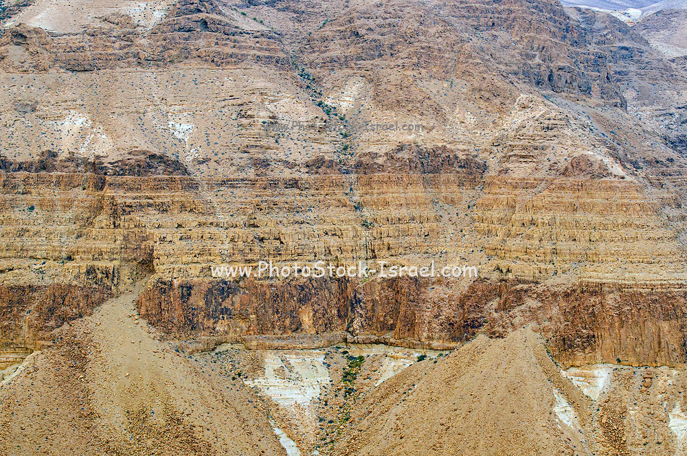 Geological layers are visible on the eroded mountain cliff. Photographed in Nahal  Tzeelim [Tze'eelim Stream], Negev Desert, Israel  in December