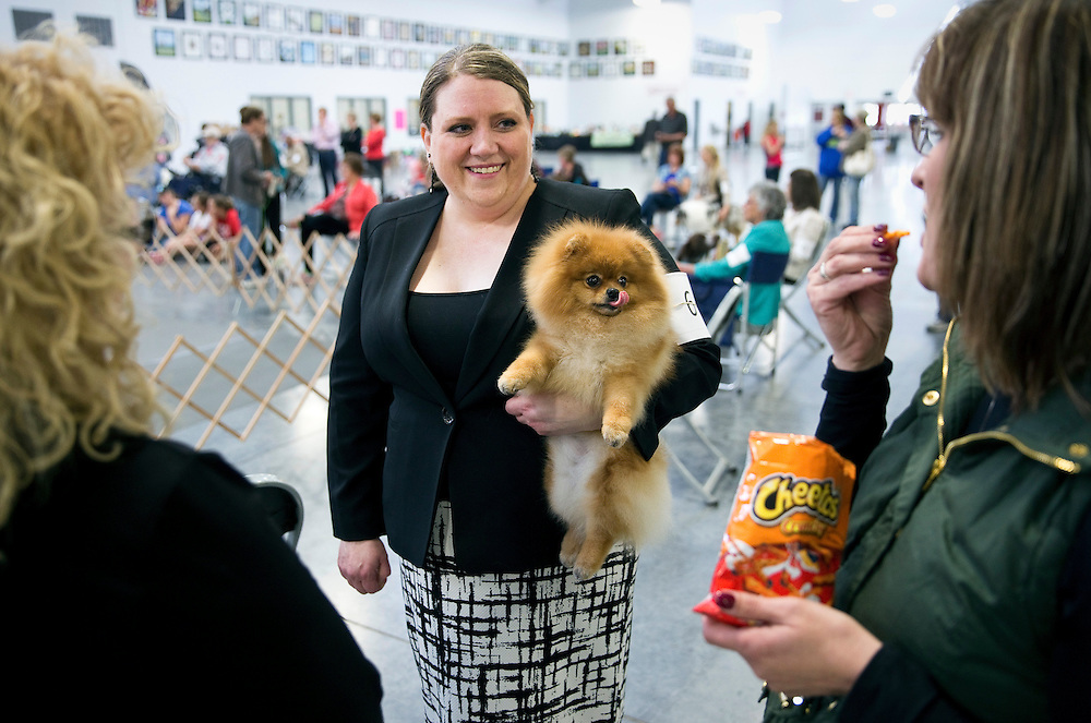 Amy Kirkland of Lincoln, Neb., holds Coco, a pomeranian, while chating with her friend, Tricia Stanczyk, right, between showings during the AKC All Breed Dog Show Saturday afternoon at the Pinnacle Bank Expo Center at Fonner Park in Grand Island. Owners from several states including Colorado and Iowa traveled to Nebraska for the two day event to show many breeds of dogs. The event is open to the public. Doors open at 9 a.m. and tickets are $5, children 12 and under are free. (Independent/Matt Dixon)