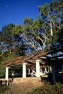 Moon over Mission Plaza, San Luis Obispo, CALIFORNIA