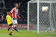 Stoke city's Steven N'Zonzi celebrates after he scores his side 2nd goal during the Barclays Premier league, Stoke city v Sunderland at the Britannia stadium in Stoke on Trent, England on Saturday 23rd Nov 2013. pic by Jeff Thomas, Andrew Orchard sports photography,