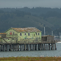 An old fishing structure stands atop a pier in the harbor at El Granada, California.