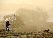 © Licensed to London News Pictures. 15/03/2012. Richmond, UK. A woman walks her dog against the golden fog. Foggy conditions at Richmond Park this morning, 15 march 2012. The weather is expected to be good across large parts of the UK for the day.  Photo credit : Stephen SImpson/LNP