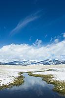 Spring snowfall in in the Valles Caldera National Preserve near Jemez Springs, NM.