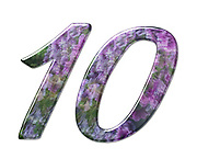 The number Ten Part of a set of letters, Numbers and symbols of 3D Alphabet made with a floral image on white background