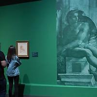Michelangelo exhibition in Museum of Fine Arts, Budapest 2019