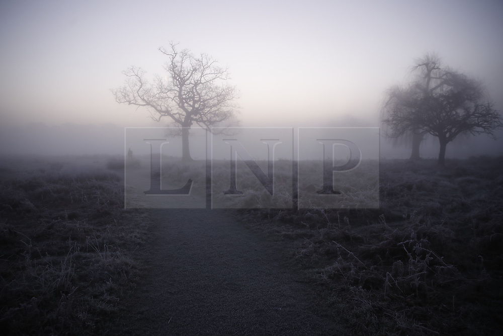 © Licensed to London News Pictures. 06/02/2020. London, UK. Mist covers Bushy Park in south west London at dawn. After a period of clear and cold days, rain and wind are forecast for the next few days as the UK feels the effects of Storm Ciara. Photo credit: Peter Macdiarmid/LNP