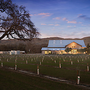 Seka Hills Olive Mill and Tasting Room Industrial Infrastructure- Architectural Photography Example of Chip Allen's work.