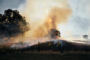 William L. FInley National Wildlife Refuge, Oregon, trainees on the fire crew watch a prescribed burn in oak savanna.