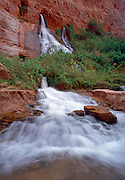 Vasey's Paradise, Colorado River mile 132, Grand Canyon National Park, Arizona, USA; 3 May 2008; Pentax 67II, 75 mm shift lens, Velvia 100