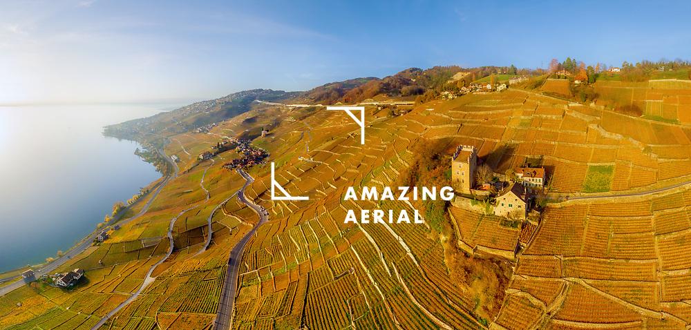 Aerial view of Vineyards and Lake Geneva,<br /> Swiss Riviera, Switzerland