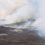 A wildfire burns through the tundra and boreal forest in an area known for polar bear denning sties near the Deer River south of Churchill, Manitoba.