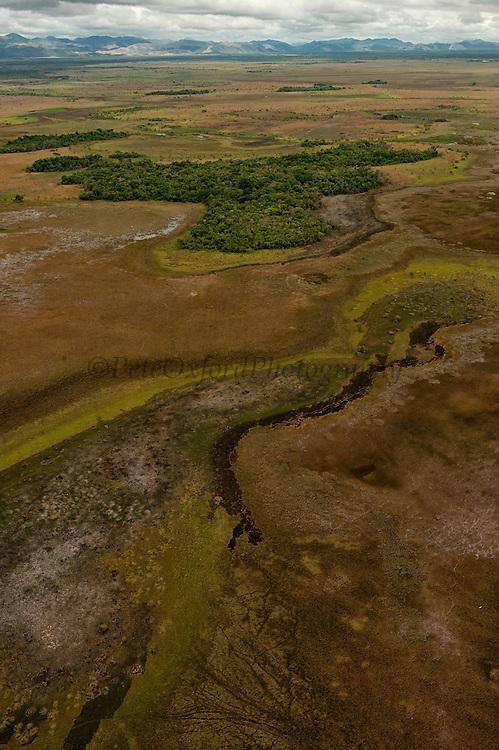 Seasonally flooded Savannah<br /> North Rupununi<br /> GUYANA<br /> South America