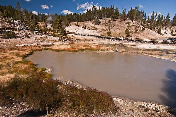 Turbulent pools of hot, muddy water; found at Mud Volcano.   Yellowstone National Park, Wyoming, USA.