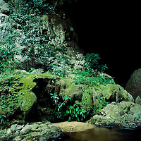 Lush, green foliage guards Rio Om cave entrance, San Ignacio, Belize