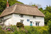 Pretty thatched whitewashed cottage house for sale, Porthoustock, Lizard Peninsula, Cornwall, England, UK