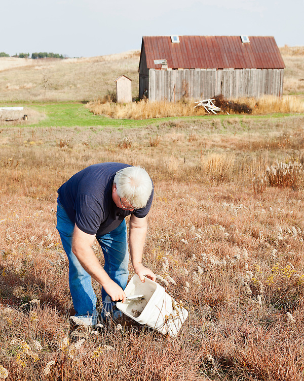 Most of the seeds at Nachusa Grasslands are hand–harvested so the seed proportions for a new planting mix can be determined and the prairie land remains undisturbed.