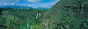Opaekaa Falls, Wailua, Kauai, Hawaii<br />
