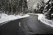 twisting road through woods with snow